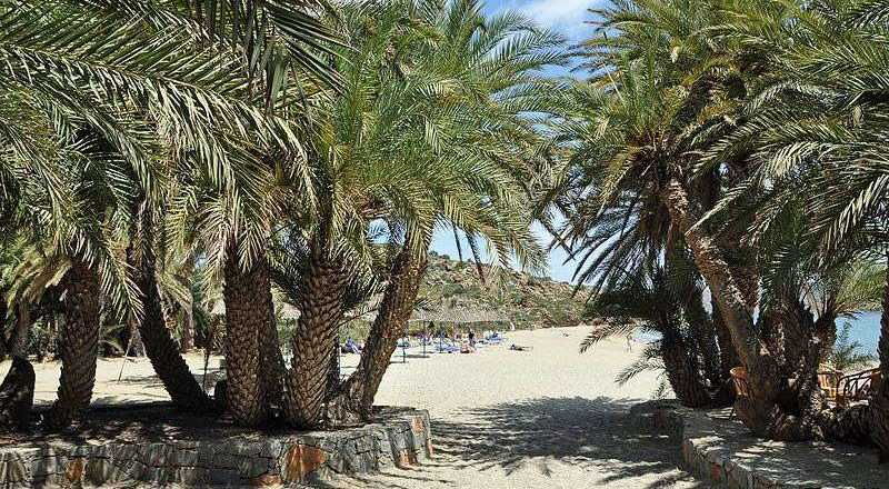 Creta 29