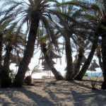Creta 26